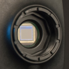 Choosing the Best Camera Sensor for Spectroscopy